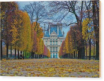 Louvre In Fall Wood Print