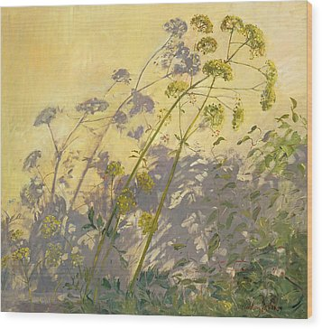 Lovage Clematis And Shadows Wood Print by Timothy  Easton