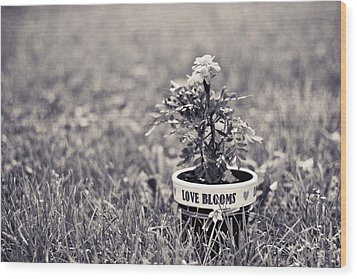 Wood Print featuring the photograph Love Blooms by Sara Frank