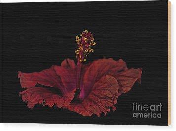 Wood Print featuring the photograph Love Flower by Marija Djedovic