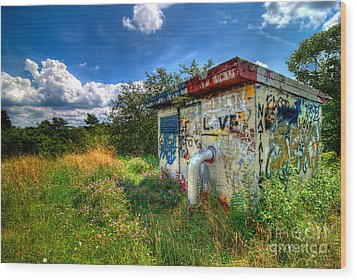 Love Graffiti Covered Building In Field Wood Print by Amy Cicconi