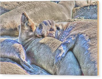 Love Hug - San Simeon California Wood Print