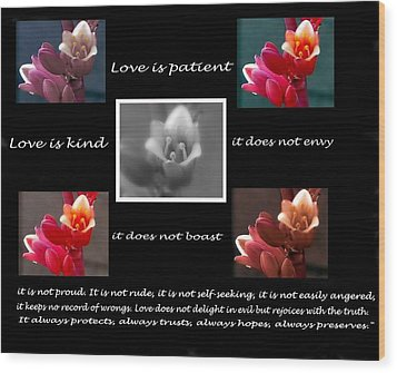 Love Is Patient Wood Print by Ruth Jolly