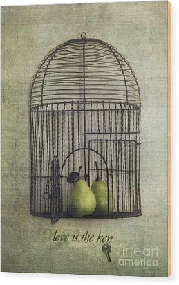 Love Is The Key With Typo Wood Print by Priska Wettstein