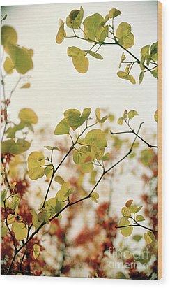 Love Leaf Wood Print by Rebecca Harman