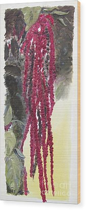Love Lies Bleeding Wood Print