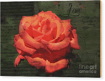 Wood Print featuring the photograph Love N Rose by Mindy Bench