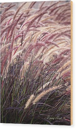 Love Purple Fountain Grass Wood Print by Penny Hunt