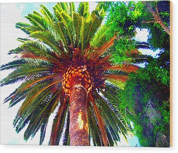 Love Under The Palm In San Diego Wood Print by Angela Annas