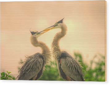 Wood Print featuring the photograph Lovebirds  by Dennis Baswell