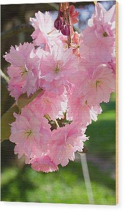Lovely Cherry Blossom Wood Print by Iryna Soltyska