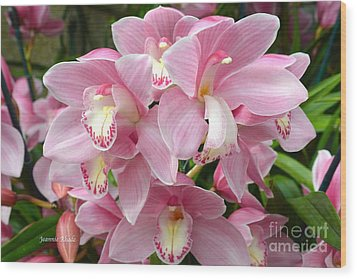 Wood Print featuring the photograph Cymbidium Pink Orchids by Jeannie Rhode