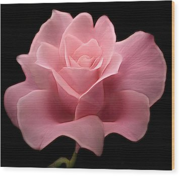 Wood Print featuring the digital art Lovely Pink Rose by Nina Bradica