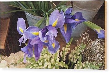 Lovely Purple Irises Wood Print