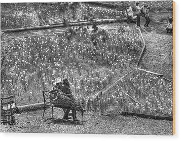 Lovers On Daffodil Hill Wood Print