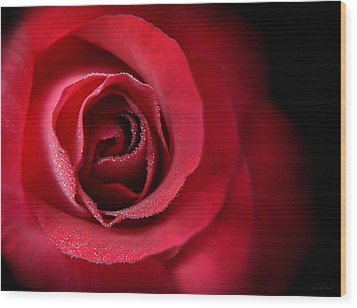 Love's Eternal Red Rose  Wood Print by Jennie Marie Schell