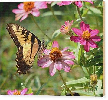 Loving Summer Garden Wood Print by Nava Thompson