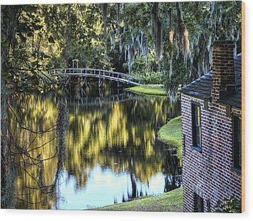 Wood Print featuring the photograph Low Country Impressions by Jim Hill