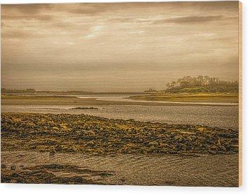 Low Tide Cape Porpoise Maine Wood Print by Bob Orsillo