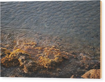 Wood Print featuring the photograph Low Tide by George Katechis