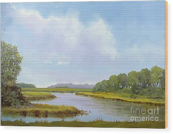 Lowcountry Afternoon Wood Print by Glenn Secrest