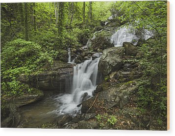 Lower Amicalola Falls Wood Print by Debra and Dave Vanderlaan