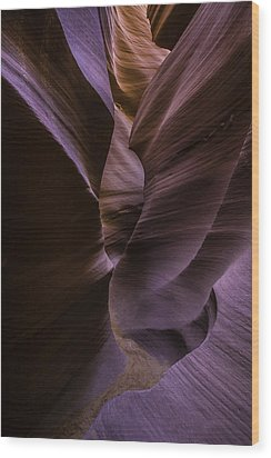 Lower Antelope Canyon Wood Print by Larry Marshall