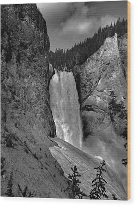 Lower Falls In Yellowstone In Black And White Wood Print by Dan Sproul