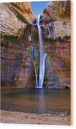 Lower Falls Of Calf Creek Wood Print by Carolyn Rauh