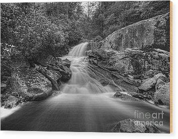 Lower Falls On Big Run River  Wood Print by Dan Friend