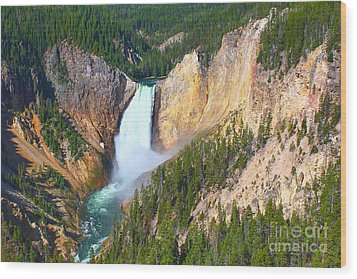 Wood Print featuring the photograph Lower Falls Yellowstone 2 by Teresa Zieba