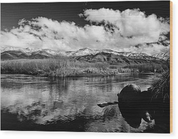 Lower Owens River Wood Print by Cat Connor