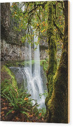 Lower South Falls Wood Print