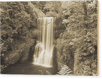 Lower South Falls In Sepia Wood Print