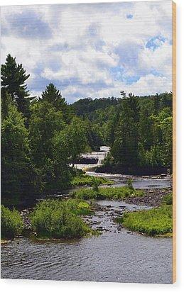 Lower Tahquamenon Falls Ll Wood Print by Michelle Calkins