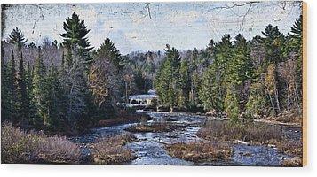 Lower Tahquamenon Falls Michigan Wood Print by Evie Carrier