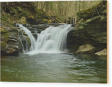 Lower Twin Falls #1 Wood Print