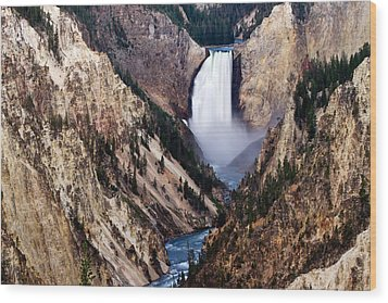 Lower Yellowstone Falls Wood Print by Bill Gallagher