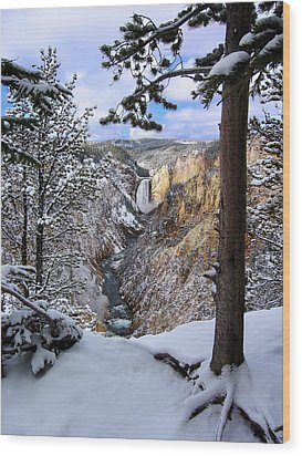Lower Yellowstone Falls In October Wood Print by Robert Woodward