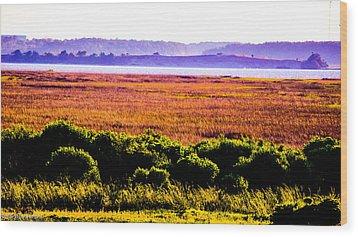 Lowland Light  Wood Print