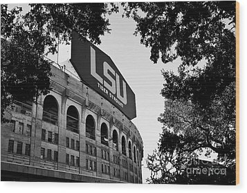 Lsu Through The Oaks Wood Print