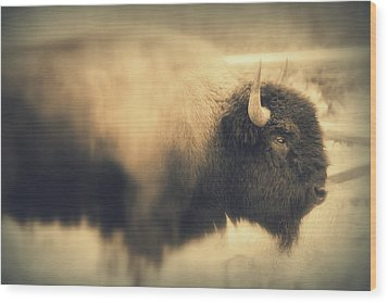 Wood Print featuring the photograph Lucky Yellowstone Buffalo by Lynn Sprowl