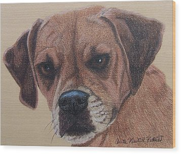 Lucy-puggle Commission Wood Print by Anita Putman