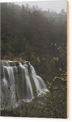 Ludlowville Falls In Autumn I Wood Print