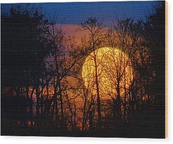 Luminescence Wood Print