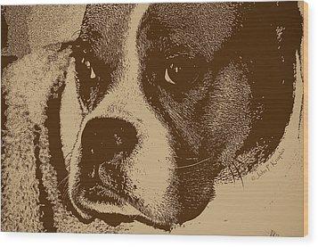 Luna The Boxer  Wood Print by John Knapko