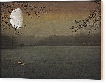Lunar Lake Wood Print by Tom York Images