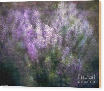 Lupine By The River  Wood Print by Kevin Felts