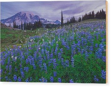 Lupines Dawn Wood Print