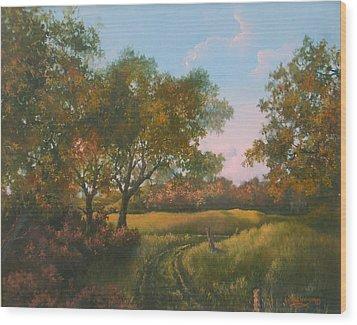 Luray Pasture Wood Print